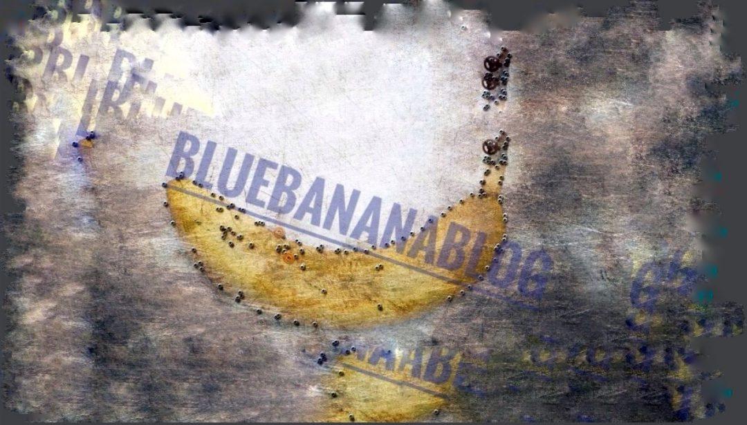 Blue Banana Blog